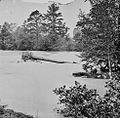 The flooded Appomattox River2.jpg