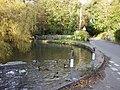 The pond, Fonmon, Vale of Glamorgan - geograph.org.uk - 1028267.jpg