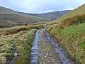 The track up Carrock Beck - geograph.org.uk - 1046721.jpg