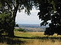 The view from Coombe Hill, through trees - geograph.org.uk - 49791.jpg