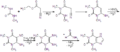 Theophylline synthesis.png