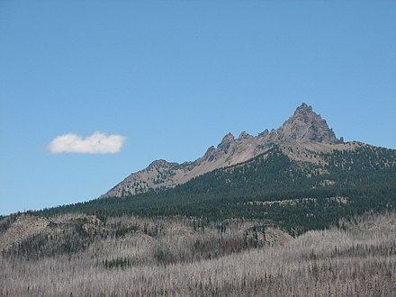 Three Fingered Jack has a desiccated, jagged appearance. Three-fingered Jack.jpg