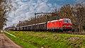 Tilburg Reeshof DBC 193 319 met 24 VTG Tamns'n met looderts trein 47729 Vlissingen - Stolberg (51113424424).jpg