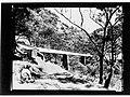 Torrens Gorge(GN14852).jpg