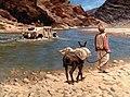 Tracking Bin Laden - Oil on Canvas - 2002.jpg