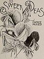 Trade list of seeds in bulk (1902) (20536255306).jpg