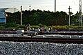Train in China DSC 6510 (8923850405).jpg