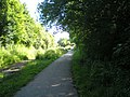 TransPennine Trail at Hyde - geograph.org.uk - 866974.jpg
