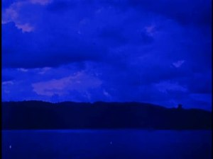 File:Tropical Nights (1920).webm