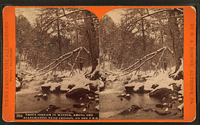 Trout stream in winter, among the Alleghenies near Cresson, on the P. R. R, by R. A. Bonine 2.jpg