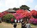 TsutsujiTatebayashi.jpg