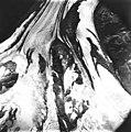 Twentymile Glacier, valley glacier, August 22, 1979 (GLACIERS 5078).jpg