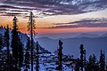 Twilight Winters.jpg
