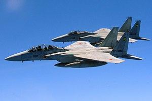 複座型のF-15DJ(手前)と単座型のF-15J(奥)第6航空団第306飛行隊所属機。