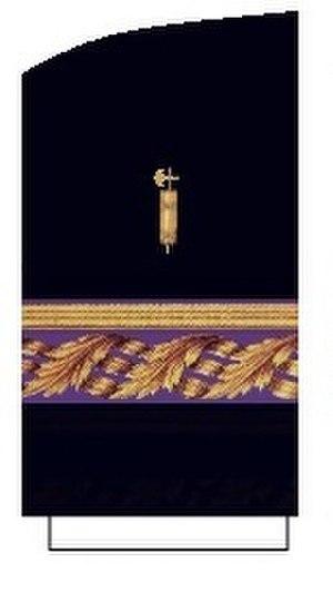 Jesús Cora y Lira - general auditor sleeve strap
