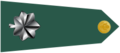 US Army O5 shoulderboard-horizontal.png