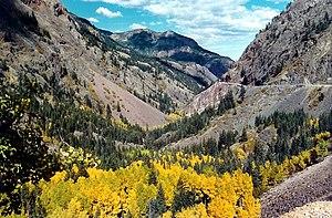 Uncompahgre Gorge - Uncompahgre Gorge in autumn