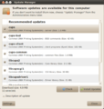 Update Manager displaying available updates on Ubuntu 10.04.png