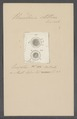 Urceolaria stellina - - Print - Iconographia Zoologica - Special Collections University of Amsterdam - UBAINV0274 113 21 0011.tif