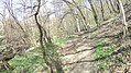 Verőce, 2621 Hungary - panoramio (83).jpg
