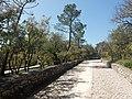 Via Sacra Parque da.Aparicão de Fátima e do Anjo aos Partorzinhos.jpg