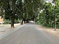 Viale Orologio - Rome (IT62) - 2021-08-30 - 2.jpg