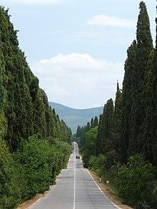 Il Viale dei Cipressi tra Bolgheri e l'oratorio di San Guido in Maremma