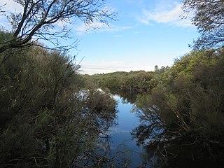 The Spectacles Wetlands Wetlands in Perth, Western Australia