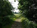 View into Wortley Park - geograph.org.uk - 898607.jpg