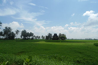 Eastern coastal plains - View of Fields at Biccavolu, Eastern coastal plains, Andhra Pradesh