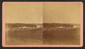 View of Oyster Banks, Damariscotta River, Me, by Z. B. Osgood.png