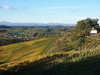 Béarn AOC - Image: Vignoble de Monein