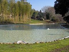 Villa Torlonia laghetto1