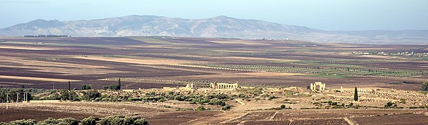 Panoramic view of the ruins with fields in front and behind, and mountains in the distance. Several reconstructed buildings including a basilica and triumphal arch are visible.
