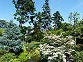 Vue d'ensemble du jardin Albert Kahn.JPG