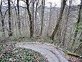 Wanderweg zum Kloster Schöntal - panoramio.jpg