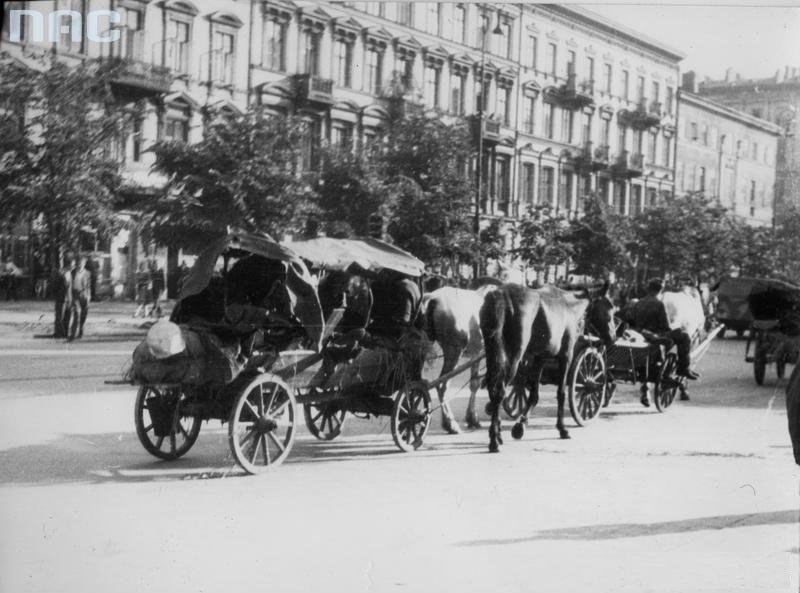Warsaw 1944 by Bałuk - 26246