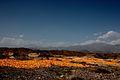 Wensu, Aksu, Xinjiang, China - panoramio (2).jpg