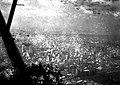 Werner Haberkorn - Vista aérea da cidade de São Paulo-SP 25.jpg