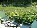 Whistlewood Farm, Rhinebeck, New York P1150891.JPG