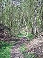 Wielkopolski Park Narodowy wiosną 6.jpg