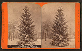 Winter at Cresson, summer resort, on the P. R. R. among the wilds of the Alleghenies, by R. A. Bonine 2.jpg
