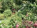 Wiosenny ogród.JPG