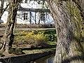 Wiosna wystartowała ,-)) 7 - panoramio.jpg