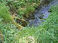 Wipperbrücke bei Holzwipper 02 ies.jpg