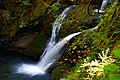 Wolf Creek Falls (Douglas County, Oregon scenic images) (douDA0053b).jpg