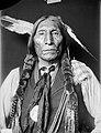 Wolf Robe Cheyenne.jpg
