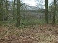 Woodland Reservoir - geograph.org.uk - 729428.jpg