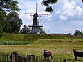 Woudrichem and slot loevestein (23) (8623297366).jpg