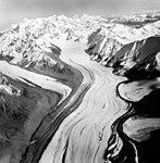 Yanert Glacier, valley glacier, August 27, 1964 (GLACIERS 5103).jpg
